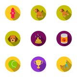 Dog equipment set icons in flat style. Big collection dog equipment vector symbol stock illustration Royalty Free Stock Photos