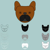 Dog face brown black grey white icon. Royalty Free Stock Image