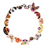 Dog face circle frame. With colors royalty free illustration
