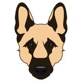 Dog face icon. Isolated german shepard face icon on a white background, vector illustration Royalty Free Stock Photos