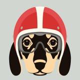 Dog face in motorcycle helmet vector illustration flat stock illustration