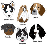 Dog Face Set Royalty Free Stock Photography