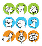 Dog Faces Cartoon Collection Stock Photo