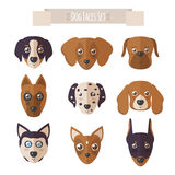 Dog faces set in flat style Royalty Free Stock Photo