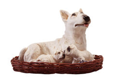 Dog and family. For home decoration Royalty Free Stock Photo