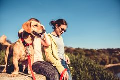 Dog and family enjoying outdoors Stock Images