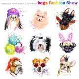Dog with fashion accessories. Trendy dogs breed set. Pets shop background. cute domestic animal. Watercolor illustration royalty free illustration