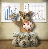 Dog financier with a piggy bank. The dog financier in glasses is holding a piggy bank with US dollars near financial charts and sacks of money royalty free stock photography