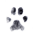 Dog fingerprint. From my own pet Stock Image