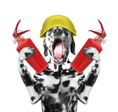 Dog firefighter screams signal -- isolated on white. The dog fireman screams signal -- isolated on white stock photos