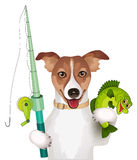 Dog with fishing pole and fish Stock Photos