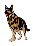 Dog Flat för tysk herde realistisk stil Royaltyfri Fotografi