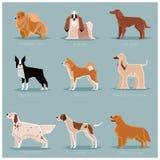 Dog flat icons set Royalty Free Stock Image
