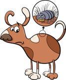 Dog and flea cartoon illustration Royalty Free Stock Photo