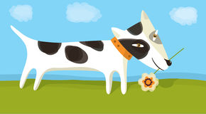 Dog with flower. Spotty dog with flower. Vector illustration Royalty Free Stock Image