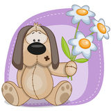 Dog with flowers Stock Image