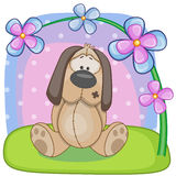 Dog with flowers Royalty Free Stock Photography