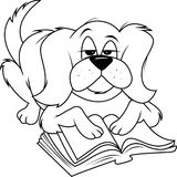 Dog fluffy reading bw Royalty Free Stock Photo