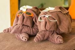 Dog folded from brown towel,wear eye glass ans flower on head at. Dog folded from brown towel,wear eye glass ans flower on head, welcome people in front of spa Royalty Free Stock Images
