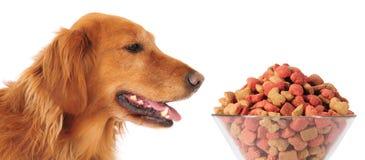Dog food Royalty Free Stock Photo