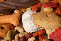 Dog food. The dog food, close up Stock Image