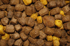 Dog food. Close up image of brown and yellow dog food Stock Images