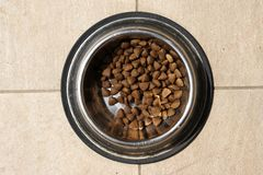 Dog food. Royalty Free Stock Photo