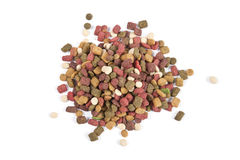 Dog food . Royalty Free Stock Images