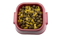 Dog Food. Plastic bowl with dog food isolated on white Stock Photography