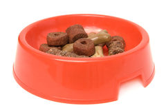 Dog food Royalty Free Stock Image