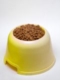 Dog food. Before the dog food white background Stock Images