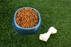 Dog Food Stock Photography