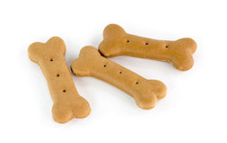 Dog food biscuit shaped like bones Royalty Free Stock Image