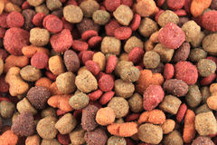 Dog food bits background Royalty Free Stock Photo