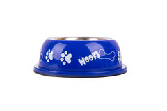 Dog Food in Blue Bowl Royalty Free Stock Photography