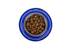 Dog Food in Blue Bowl Stock Images