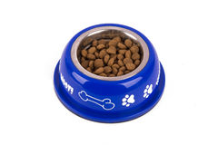 Dog Food in Blue Bowl Stock Photography