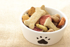 Dog food in bowl Stock Image
