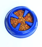 Dog Food in Bowl. Dog food in Slow Feed Bowl with raised pieces to prevent dogs or cats from eating fast stock photography