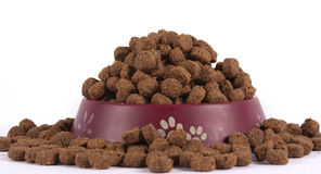 Dog food in a bowl. Dry dog food  on white background Royalty Free Stock Photography