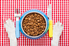 Dog food bowl Stock Photos