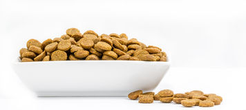 Dog food in a bowl on white background Royalty Free Stock Photo