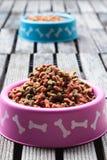 Dog food Stock Image