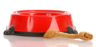 Dog food dish and rawhide bone Stock Photos