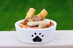 Dog food in dog bowl Stock Image