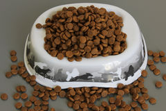 Dog food on a gray background Stock Image