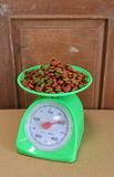 Dog food on green weighting scale Royalty Free Stock Images