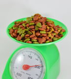 Dog food on green weighting scale Royalty Free Stock Photos