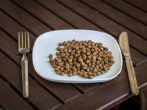 Dog food on the plate Stock Photo