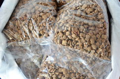 Dog food for sale in pet shop Stock Image